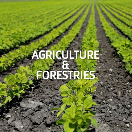 Agriculture & Forestries