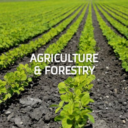 Agriculture & Forestry