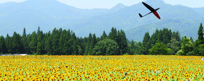 Precision Agriculture with UAVs Delair-Tech