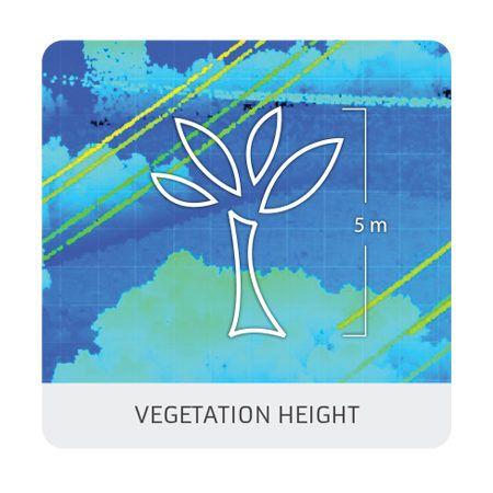 Vegetation height