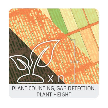 Plant counting, gap detection and plant height