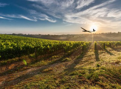 DT18 UAV Delair-Tech flying over fields for agriculture industry