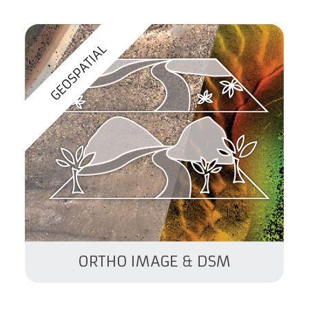 Ortho & DSM (geomatics)