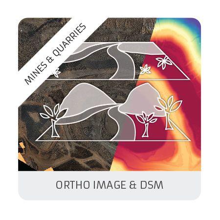 Ortho & DSM