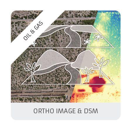 Ortho & DSM (oil & gas)
