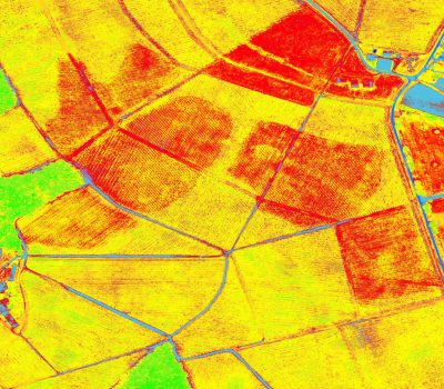 Agriculture Precision by drone UAV Delair-Tech Near Infrared