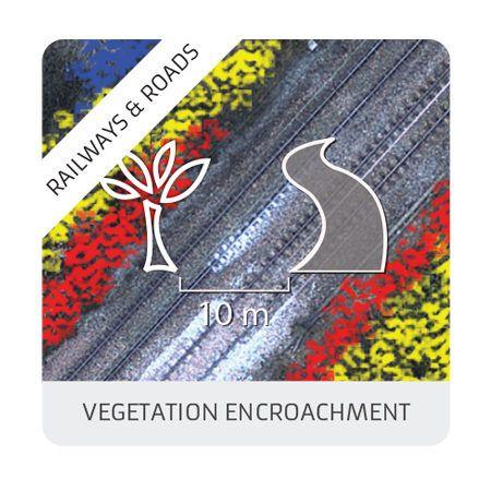 Vegetation encroachment
