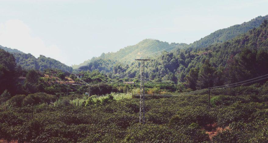 vegetation-encroachment-uav-lidar