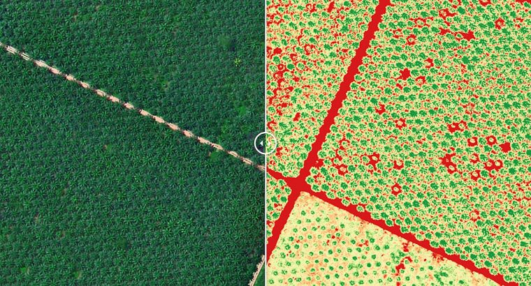 3 ways a long-range drone will optimise your agriculture business